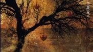 Cayetano - Fairy Tales