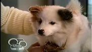 Куче с блок С01 Е22 Финал на сезон 28.12.2013