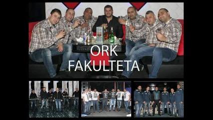 Ork Fakulteta Srubski kuchek 2013 Studio-favorit Dj Lamarina.mp3