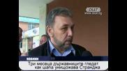Три месеца държавниците гледат как шапа унищожава Странджа