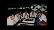 Ork Fantazy Group & Silvester 2013 album live Mix Ku4eci