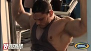 Jcc Champ Dobri Delev Trains Chest 3 Weeks Out from Arnold Amateur