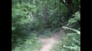 Downhill - трасе в Троян (спускане към читалището)