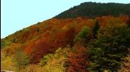 Есенна приказка край с. Забърдо снимки на Огнян Немски - видео Koinova