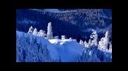 Пучини - Зимни Сънища