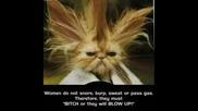 Снимки На Смешни Животни