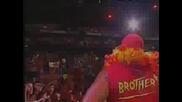 Hulk Hogan - Hulkamania Back
