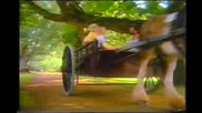 Тони Дачева - Ученическа любов