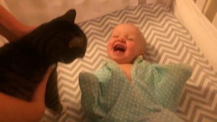 Малко Бебче се радва на Котенцето вкъщи