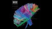 Muse - Explorers