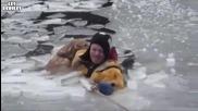Хора спасяват куче от удавяне !