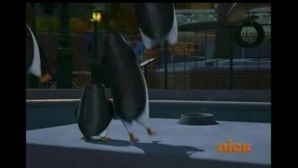 The Penguins of Madagascar - Endangerous species