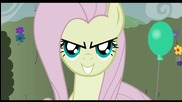 Fluttershy gets Beebeeped in the maze.