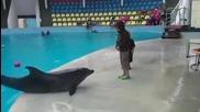 Малко дете и делфин си подават топка.
