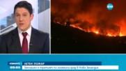 Евакуират 1000 души заради горските пожари в Нова Зеландия