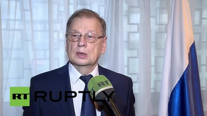 Egypt: Russia, Egypt working closely together - Russian ambassador
