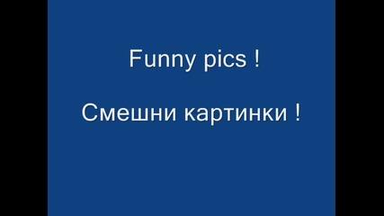 Funny pics !!!