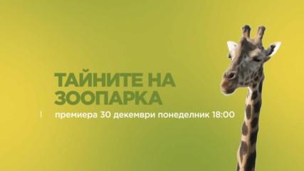 Тайните на зоопарка | промо | 30 декември