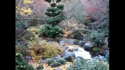 Красив Водопад в България
