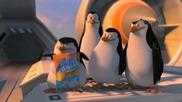 пингвините от дупница