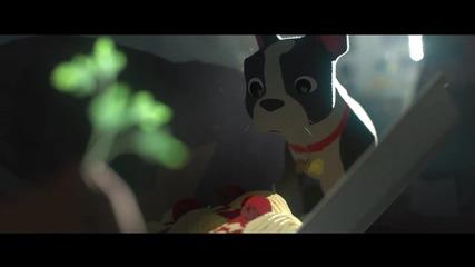 Пир - Любовната история на мъж през очите на неговото куче.