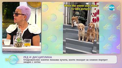Рози Караславова: За възпитанието на децата в любов към хубавата музика - На кафе (13.05.2021)