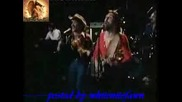 Dr. Hook - When Your In Love With A Beautiful Woman