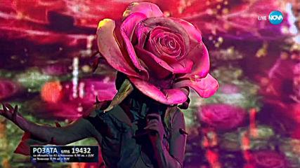 Розата изпълнява Излел е Дельо хайдутин | Маскираният певец