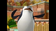 The Penguins of Madagascar - The Helmet