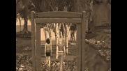 Sims 2 Mirrors