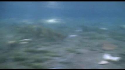 Americano (2005) / ако денят личи по заранта днес ще е слънчево и през ноща