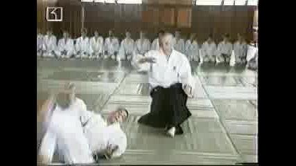 Сенсей Йейтс, Йошинкан Айкидо Семинар