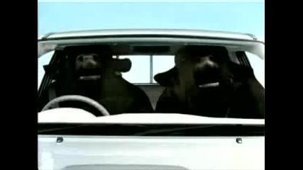 Реклама - Toyota С Крави