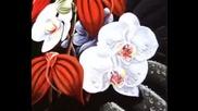 Kitaro - Orchids