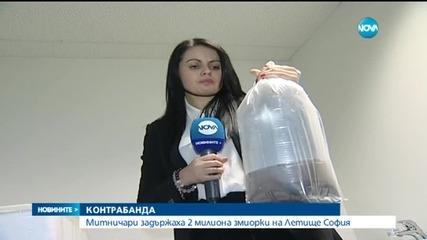 Два милиона змиорки задържаха на Летище София