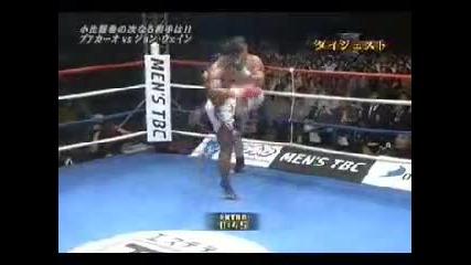 Buakaw, Muay Thai fighter