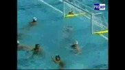 Pro Water Polo Goals