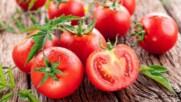 Защо не е добре да държим доматите в хладилника.mp4