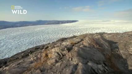 Гренландските глетчери