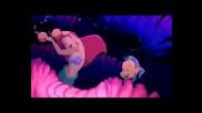 Little Mermaid - Shake Shake Senora