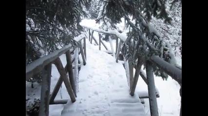 Честит първи сняг! Снежна Витоша 2015
