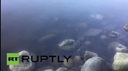 Canada: Oil spill seeps in Vancouver's English Bay