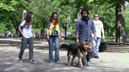 Историята на едни добри хора ... и кучето Брейв