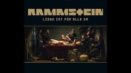 Интервю с Флаке от Rammstein по Zrock