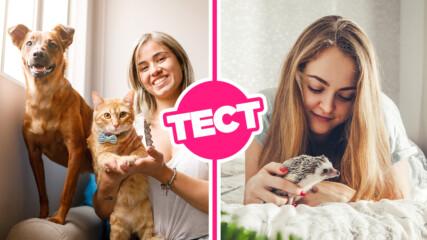 ТЕСТ: Знаеш ли тези факти за най-популярните домашни любимци?
