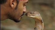 Повелителят на змиите