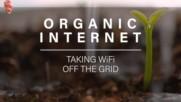 Organic Internet