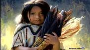 Navajo - Harvest Dreams