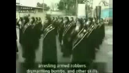 Полицайки В Иран