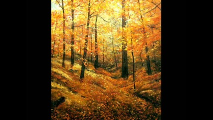 Детски хор - Есен в гората